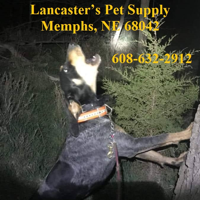Lancaster's Pet Supply